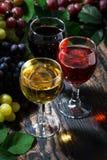 Sortiment av vin på träbakgrund, lodlinje, bästa sikt arkivbild