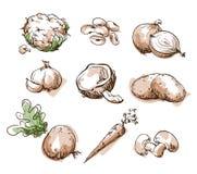 Sortiment av vit, foods för ljus färg, frukt och vegtables, vektor stock illustrationer