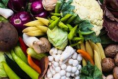 Sortimentet av nya grönsaker stänger sig upp Arkivbilder