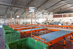 Sorting Distribution Warehouse. Conveyor Belt System For Sorting in Warehouse stock photos