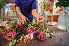 Sorting out flowers. Female florist sorting flowers in workshop stock photo