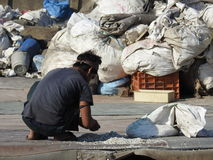 Sorting out plastic wastes in Dharavi slum,Mumbai,India. Working hard on the rooftop in Dharavi Royalty Free Stock Photography