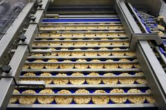 Sorting of round dietary loaves on conveyor automated machine stock images