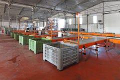 Sorting warehouse Stock Photos