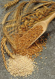 Sorts of cereals. Various sorts of cereals and grain on granite slab stock images