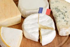 Sorts of french cheese. Different sorts of french soft cheese on a plate Stock Image