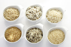 Sorts of Rice in bowls, raw and cooked Stock Images