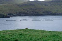 Sorvagsfjord i den Vagar ön på Faroe Island royaltyfri foto