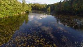 Sorvolando acqua dolce un il giorno di estate soleggiato video d archivio