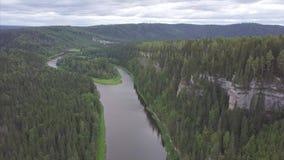 Sorvolare il bello fiume della montagna e la bella clip della foresta Vista aerea del fiume mistico ad alba con nebbia stock footage