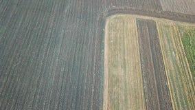 Sorvoli il terreno arabile Vista aerea del villaggio stock footage