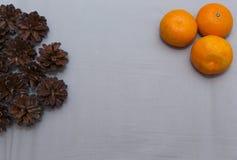 Sosen mandarinas z miejscem dla podpisu i rożki Zdjęcia Royalty Free