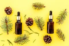 Sosna istotny olej w butelkach na żółtego tła odgórnym widoku Wzór z sosna rożkiem i gałąź Fotografia Royalty Free