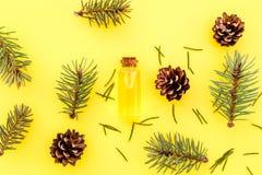 Sosna istotny olej w butelkach na żółtego tła odgórnym widoku Wzór z sosna rożkiem i gałąź Zdjęcie Stock