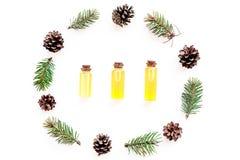 Sosna istotny olej w butelkach na białego tła odgórnym widoku Wzór z sosna rożkiem i gałąź Zdjęcie Stock