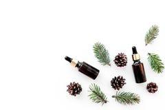 Sosna istotny olej w butelkach na białej tło odgórnego widoku kopii przestrzeni Wzór z sosna rożkiem i gałąź Zdjęcia Royalty Free
