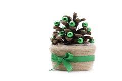 sosna rożek dekorujący Zdjęcie Stock