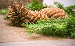 Sosna rożek z jedlinowym drzewem na drewnianym tle Fotografia Stock