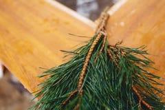 Sosna rozgałęzia się blisko gorącego conifer zdroju fotografia stock