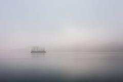 Sosnowa wyspa przy spokojnym świtem w Han rzece fotografia stock