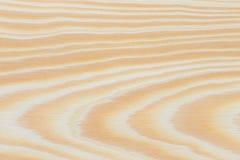 Sosnowego drewna tekstury deska z gnarl Zdjęcie Stock