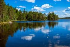 Sosnowy lasowy odbicie w jeziorze Obrazy Royalty Free