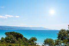 Sosny i błękitny morze w Alghero linii brzegowej Zdjęcia Royalty Free