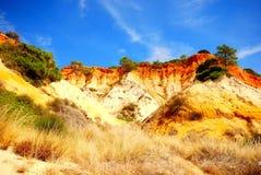 Sosny i czerwieni falezy (Algarve Portugalia,) Zdjęcia Royalty Free
