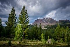 Sosny i Lassen szczyt, Lassen parka narodowego ` Zdjęcia Stock