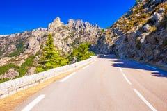 Sosny w Col De Bavella górach, Corsica wyspa, Francja, fotografia stock