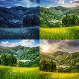 Sosny zbliżają łąkę w górach Fotografia Stock