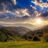 Sosny zbliżają dolinę w górach na zboczu przy zmierzchem Zdjęcia Stock