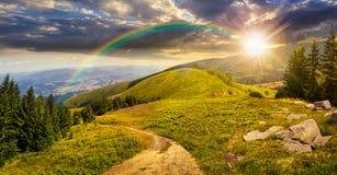 Sosny zbliżają dolinę w górze przy zmierzchem Zdjęcia Stock