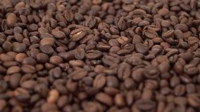 Sosowane kawowe fasole kłaść płaska grań i pokazują w górę zbiory