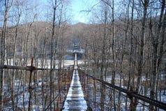 Sospensione del ponte fotografia stock