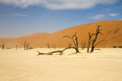 Sosssusvlei desert, Namibia Stock Photos