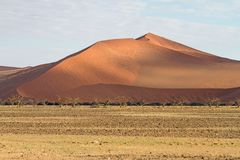 Sossuavlei park, Namibia. Dried trees  in the  sand dunes of Sossusvlei park, Namibia Stock Photo