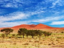 sossufley de la Namibie de namib de désert Photos stock