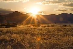 Sossusvlei公园,纳米比亚 图库摄影