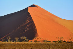 Sossusvlei, Namib Naukluft国家公园,纳米比亚 库存图片