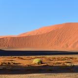 Sossusvlei, εθνικό πάρκο Namib Naukluft, Ναμίμπια Στοκ Φωτογραφία