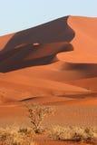 sossusvlei красного цвета дюн Стоковая Фотография