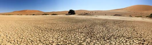 Sossusvlei, Намибия Стоковые Изображения