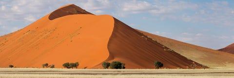 sossusvlei панорамы Намибии дюны пустыни Стоковые Изображения