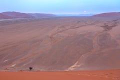 Sossusvlei :纳米比亚沙漠 图库摄影