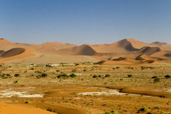 Sossusvlei Stock Photo