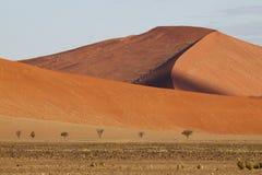沙漠风景, Sossusvlei,纳米比亚 图库摄影