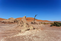 Sossusvlei beautiful landscape of death valley, namibia Royalty Free Stock Photos