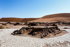 Sossusvlei beautiful landscape of death valley, namibia Stock Images