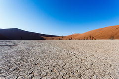 Sossusvlei beautiful landscape of death valley, namibia. Sossusvlei beautiful sunrise landscape of hidden death valley in Namibian desert with blue sky, best Stock Photos